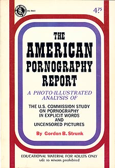 The American Pornography Report