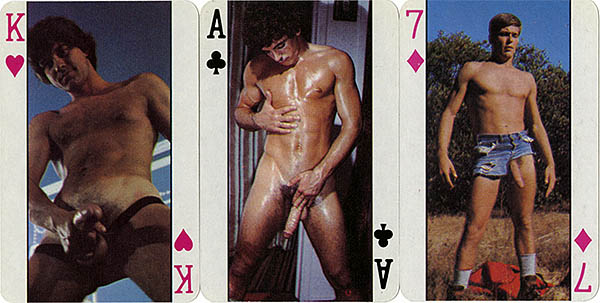 Playing Cards Deck 511
